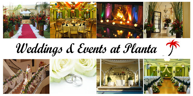 Whether you are planning a small intimate or an extravagant wedding event